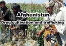 Afghanistan; Drug cultivation and trafficking